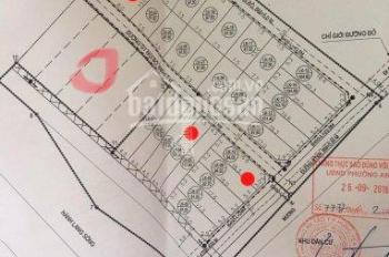 Bán đất đấu giá giáp KĐT Đại An 300 ha do Vingroup làm CĐT giá 13 triệu/m2 - LH 0942880888