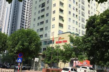 Bán căn hộ chung cư penthouse tòa 2A - khu nhà ở Vinaconex 7 - 136 Hồ Tùng Mậu