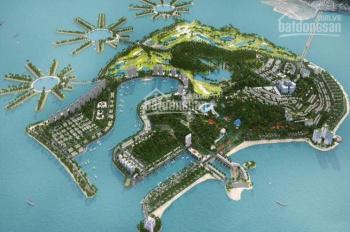 Lô biệt thự Tuần Châu đường đôi cực hiếm cần bán cho nhà đầu tư - 0971343355