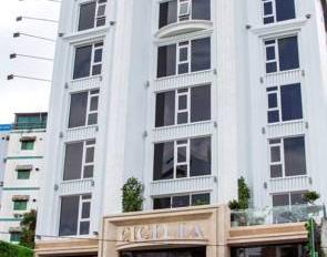 Cần bán tòa nhà CHDV 9 tầng duy nhất, rẻ nhất phường 4 Tân Bình, 8x20m, Khai thác full