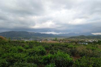 Cần tiền trả nợ bán gấp đất xây nghỉ dưỡng, villa view núi Đại Bình, Quốc lộ 20
