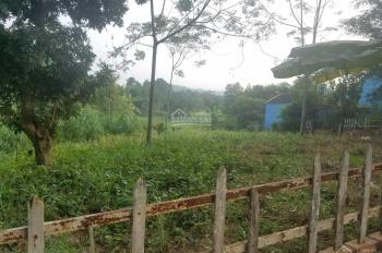 Bán 1030m2 đất tại Yên Bài, Ba Vì mặt tiền 30m, view cánh đồng, mặt thoáng, đường rộng, giá rẻ