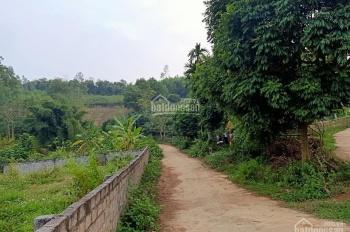 Gia chủ nhờ bán hộ hơn 3000m2 đất tại Phú Mãn, giá rẻ bất ngờ, chỉ 1tr/m2, LH: 0384099950