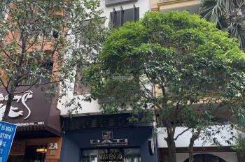 Cần tiền bán nhà MT Đường Lê Thị Hồng Gấm - Ký Con, Quận 1. DT: 4.2x18m giá 47 tỷ TL