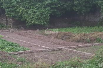 Gia đình cần bán cắt lỗ lô đất tại Hoàng Long, Đặng Xá