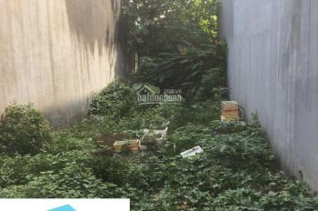 Bán đất sổ riêng xe hơi vào tận nơi Vĩnh Phú
