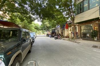 Cho thuê nhà riêng ngõ 91 Trần Quang Diệu , 65m2, 3 tầng ô tô đỗ cửa . Mới xây , 25tr/th