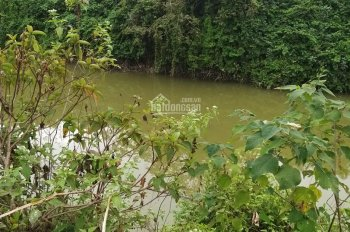Bán đất gần resort thung lũng Ngọc Linh và Xanh Villas, hơn 1tr/m2, LH: 0974715503/ 0356891222