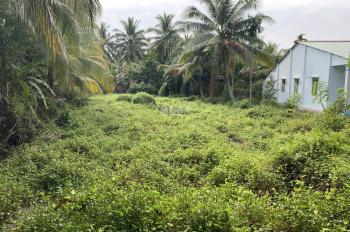 Bán 904m2 đất vườn 1/ An Sơn 01, Thuận An, Bình Dương, cách sông BD chỉ 300m, đường xe hơi ok