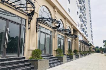 Ruby City CT3 Phúc Lợi 19tr/m2 - chung cư giá 1 tỷ nhận nhà trước Tết chiết khấu khủng từ 5 - 8%