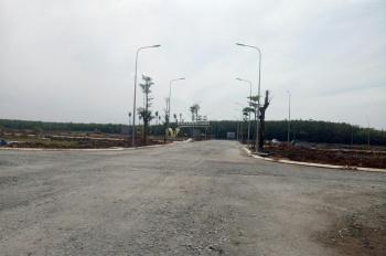 Bán đất nền dự án tại Thuận An Central - Huyện Thuận An - Bình Dương
