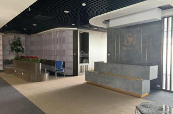 Cho thuê 450m2 sàn văn phòng tòa nhà Golden Palm - Lê Văn Lương