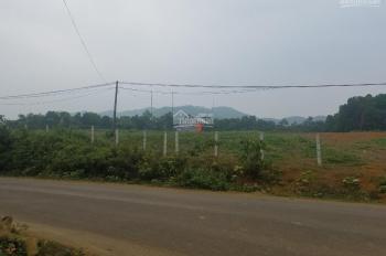 Bán lô đất 1,8ha,  mặt đường 100m. mặt đg 446 thuộc Tiến Xuân, Thạch Thất, Hà Nội, mặt bằng phẳng