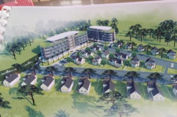 Bán đất nền biệt thự Phường 7, Đà Lạt