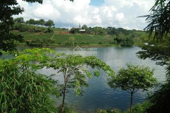 Phân phối đất nền đầu tư nghỉ dưỡng ở Bảo Lộc, full thổ cư có sổ riêng từng nền