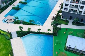 Cho thuê căn hộ Novaland Sunrise Riverside, liền kề Phú Mỹ Hưng, 03 mặt sông, giá thuê: 15 tr/th