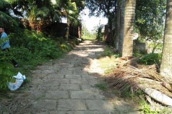 Bán khuôn viên nhà vườn 10000m2 tại Liên Sơn, Lương Sơn, Hòa Bình