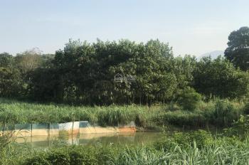 Cần bán 4000m2 đất thổ cư view đẹp tuyệt vời, Vân Hoà, Ba Vì, HN. Giá 400 nghìn/m2