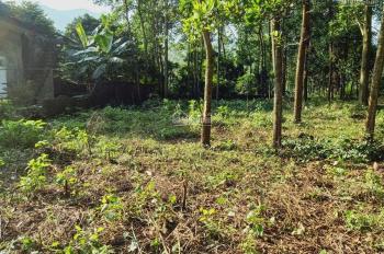 Cần chuyển nhượng lô đất 3000m2 đất làm biệt thự nhà vườn giá đầu tư tại Hợp Hòa, Lương Sơn, HB