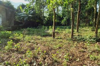 Cần bán lô đất 3200m2 đất làm biệt thự nhà vườn views cánh đồng tại Hợp Hòa, Lương Sơn, HB