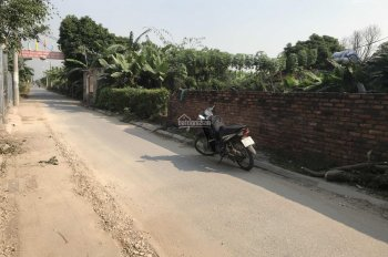 Bán đất siêu mẫu tại Giao Tất A - Kim Sơn - Gia Lâm - Hà Nội