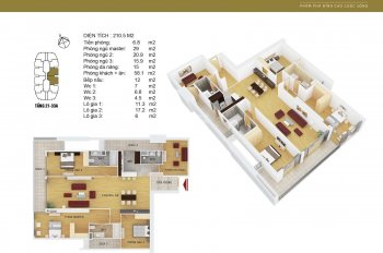 Bán rẻ siêu căn hộ chung cư Discovery Complex Cầu Giấy