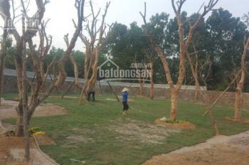 Cần bán 1,060m2 đất tại xã Nhuận Trạch, huyện Lương Sơn, Hòa Bình