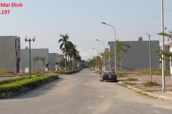 Em có 2 lô liền kề mặt đường 32m Hàng Dừa, khu dân cư Số 3 Hiệp Hòa cần bán