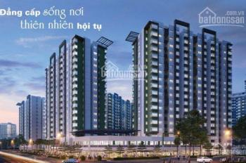 Bán căn hộ 2PN 71m2 khu Emerald Celadon City, giá cực hot so với thị trường, LH: 0936592937