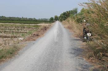 Chính chủ bán đất vườn Kênh Tràm 1 xã Bình Lợi Bình Chánh