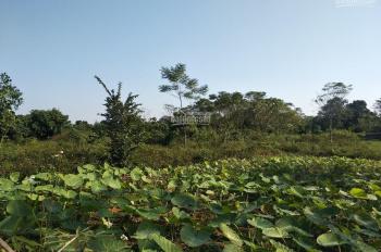Bán lô đất vô cùng phẳng đẹp tại Cư Yên, Lương Sơn, diện tích 5ha có 400m2 thổ cư