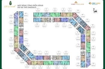 Thông tin chi tiết căn hộ CT8 Mỹ Đình, The Emerald - Ngọc Lục Bảo, hotline: 0329 339 998