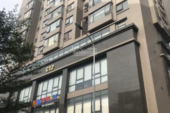 Chung cư E4 Yên Hòa (Vũ Phạm hàm), duy nhất 1 căn 3PN, DT 120m2 giá 34 triệu/m, nhận nhà ở ngay