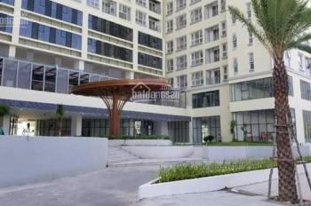 Cho thuê căn hộ đẹp nhất The Golden Star chỉ 12 tr/tháng, 3PN, 2WC. LH 0924046746