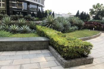 Cho thuê căn hộ Sài Gòn Airport Plaza 3PN, 125m2, cạnh sân bay. Hotline PKD SSG 0908 078 995