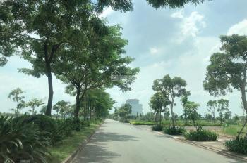 Thành phố xanh, thành phố sinh thái