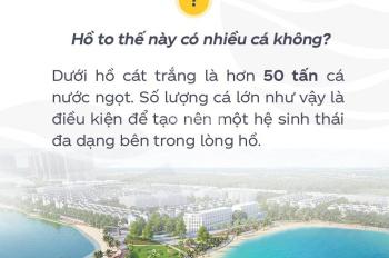 Bán Xuất mặt hồ HA1 Diện tích lớn nhất dự án 567 m2 Vừa ở vừa kinh doanh Hướng TB view giữa hồ lớn