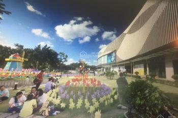 Bán rất gấp đất đường Nguyễn Trãi - Lái Thiêu, ngay Aeon Bình Dương, MT 30m, 100m2, SHR, giá 1.1 tỷ