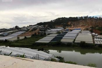Đất nền phân lô tại Lâm Văn Thạnh, Đà Lạt cần bán với tổng giá 3 lô đất 1690m2 với giá bán 11.7 tỷ