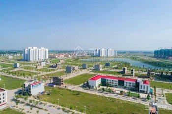 Chính chủ cần bán đất biệt thự 200m2 230m2 BT10 BT11-8, 5 Thanh Hà Cienco 5 giá chỉ 21.5tr/m2 gấp