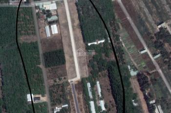 Còn mấy lô đất thanh lý giá 7 - 10 triệu/m2, ngay mặt tiền KCN Giang Điền, đã có sổ, thổ cư 100%