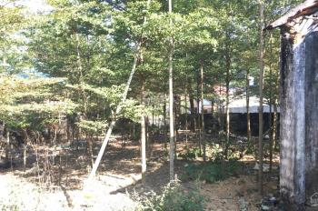 Chính chủ cần bán lô đất 960m giá rẻ Thôn quýt - Yên bài - Ba vì Lh 0906262625