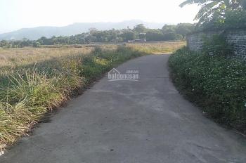 Bán đất thổ cư diện tích rộng 3000m2 tại Lương Sơn, Hòa Bình