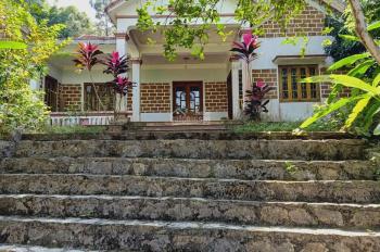 Cần chuyển nhượng lô đất 3848m2 đã có khuôn viên nhà vườn hoàn thiện giá hợp lý tại Cư Yên, LS, HB