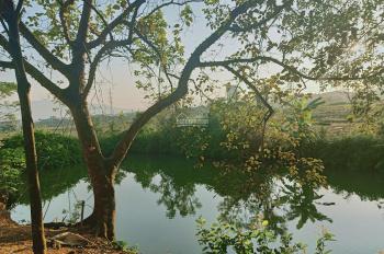 Cần bán 6000m2 nhà vườn Hòa Sơn, Lương Sơn, Hòa Bình, giá 4 tỷ gần đường Hồ Chí Minh, ĐT 0971274648