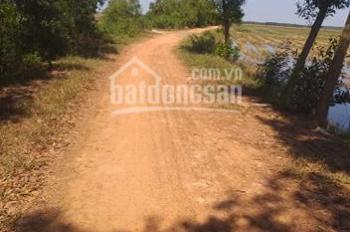 Bán đất đường tỉnh lộ 7 xã An Nhơn Tây huyện Củ Chi,diện tich=10.000m2