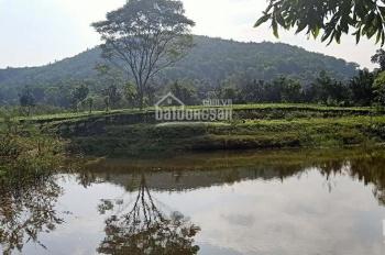 Chủ cần bán gấp đất nghỉ dưỡng 25000m2 giáp hồ Đồng Mô cực đẹp 7ty