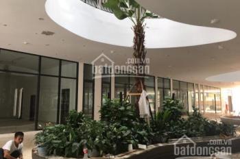 Bán căn 2 phòng ngủ, tầng 15, tòa B đẹp nhất dự án Green Pearl 378 Minh Khai