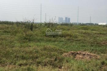 Kho đất dự án Đại Học Quốc Gia 245, phường Phú Hữu Quận 9