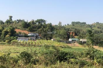 Bán đất thổ cư trang trại nhà vườn DT 5000m2 tại Ba Vì, giá 2,4 tỷ